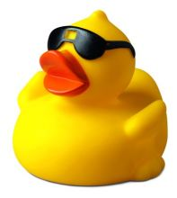 Squeaky duck with sunglases